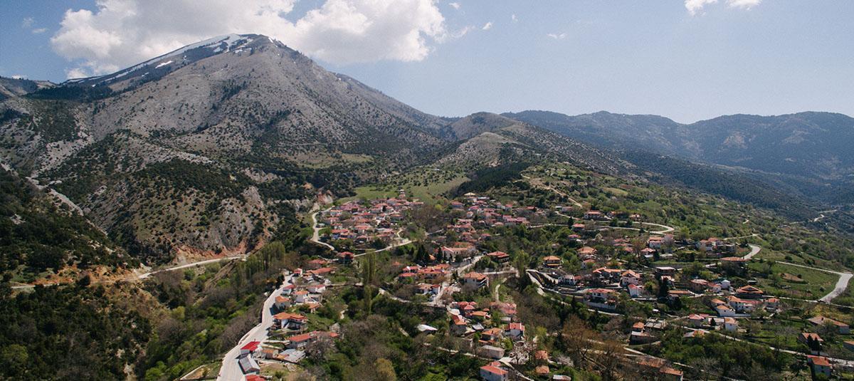 Δήμος Τεμπών