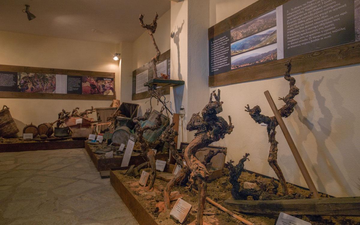Μουσείο Οίνου Αμπέλου Ραψάνης